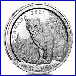 2021 Canada 3.4 oz Multilayered Cougar Proof Silver Coin. 9999 Fine withBox & COA