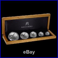 Proof Mexican Libertad Silver 5 Coin Set Mexico 2019 in wooden box mintage 1000